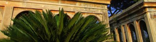palatine palace rome
